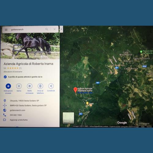 Trekking a Cavallo PUNTO TAPPA